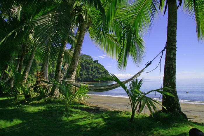 Playa Matapalo, полуостров Оса, Коста-Рика